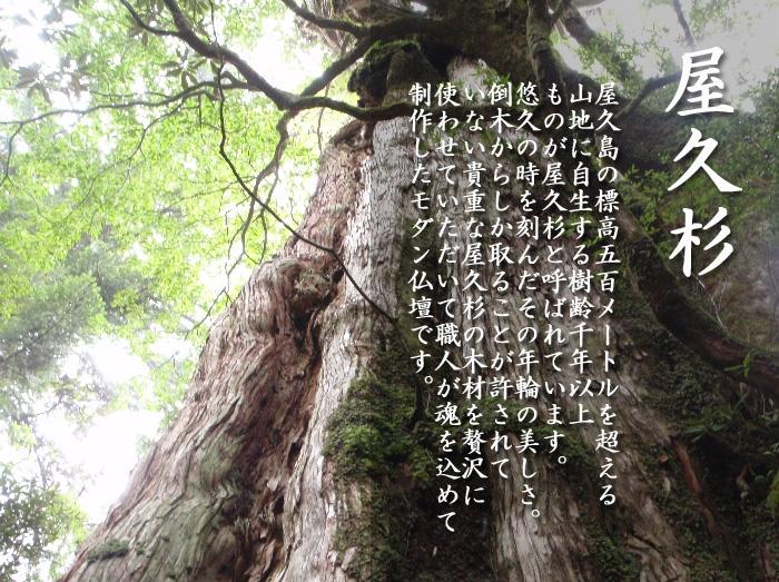 モダン仏壇 [むげん] 13-40号画像2